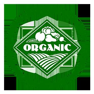 OEFFA Certification
